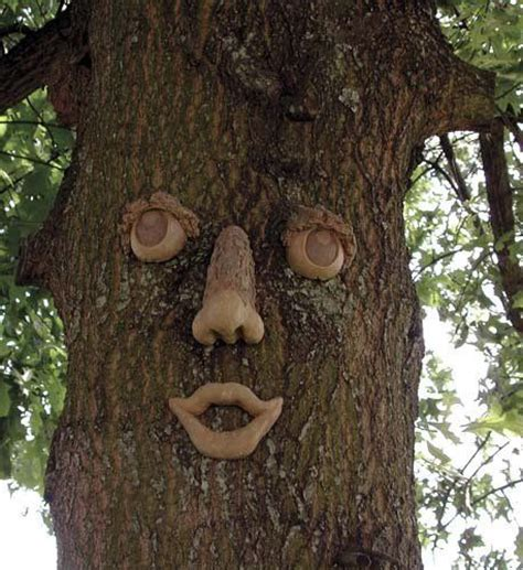 tree face angry face tree funny image