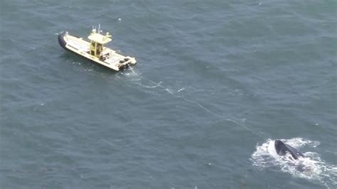boat capsized boat capsizes off coast of fort lauderdale