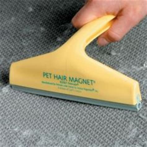 Upholstery Pet Hair Remover by 1000 Images About Pet Hair Removing From Floors And