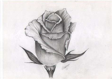 detailed rose tattoo designs best 25 bud ideas on black and