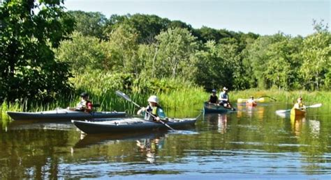 hadlyme ferry boat launch estuary center offers guided paddling tour of whalebone