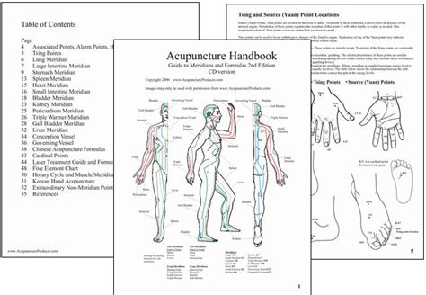 atlas of acupuncture points chiro opinions on acupuncture point