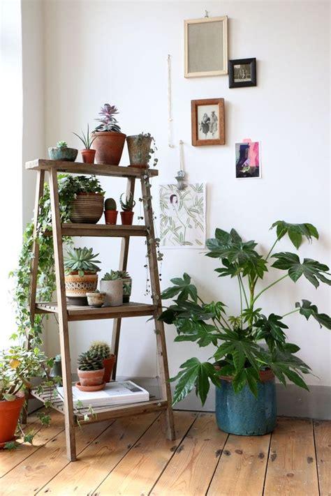 floor plants home decor exquisite interior bathroom home design inspiration
