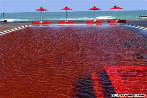 Pool Of Blood In Stool by Paramedic Pool Of Blood