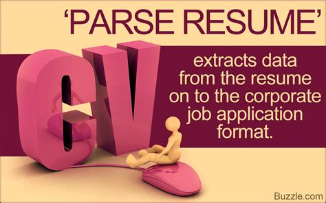 What Does Parse Resume by What Does Parse Resume