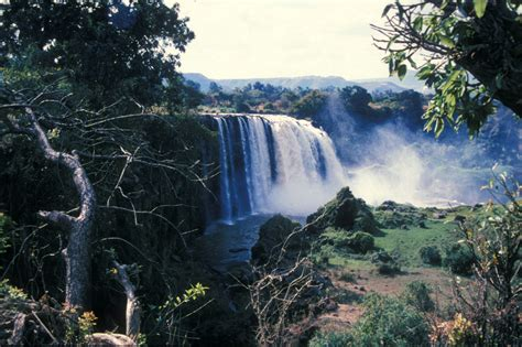 the blue nile river africa facts and information