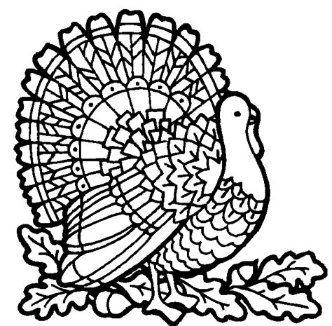 turkey coloring page thanksgiving coloring pictures