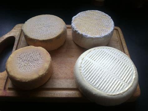 comment faire du fromage maison affinage