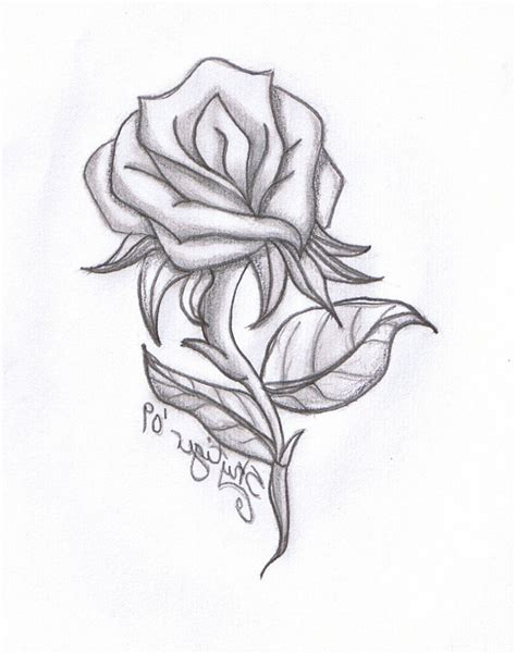 drawing in love flowers simple pencil sketching of flowers