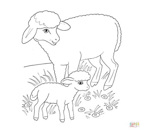 coloring book pages of sheep sheep mother and lamb coloring page free printable