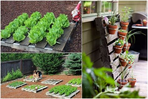 diy garden projects 25 amazing diy pallet garden projects house interior designs