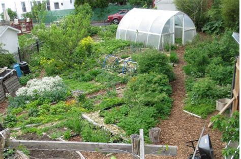 1 Acre Backyard Design by What Everybody Should About Profitable Permaculture