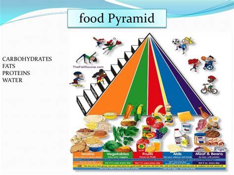 schiavo zerbino piramide alimentare inglese 28 images gluteialtop