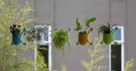 Suction Cup Planter by Stick It Innovative Livi Suction Cup Planter Page 3 Of