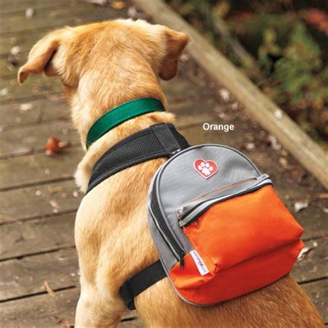 backpack for dogs 1000 ideas about backpack on hiking gear bag and stuff