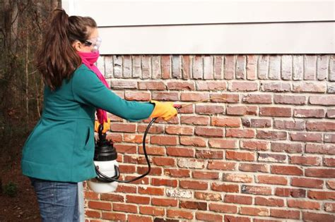 removing paint from bricks exterior pin by howlett on diy