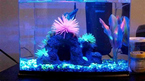 aquarium decorations glofish aquarium decorations decor ideasdecor ideas