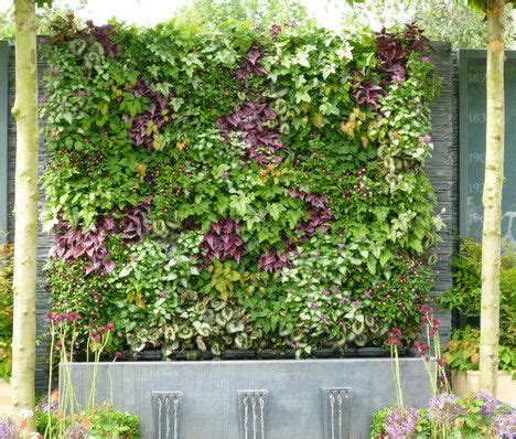green vertical walls   chelsea flower show treehugger