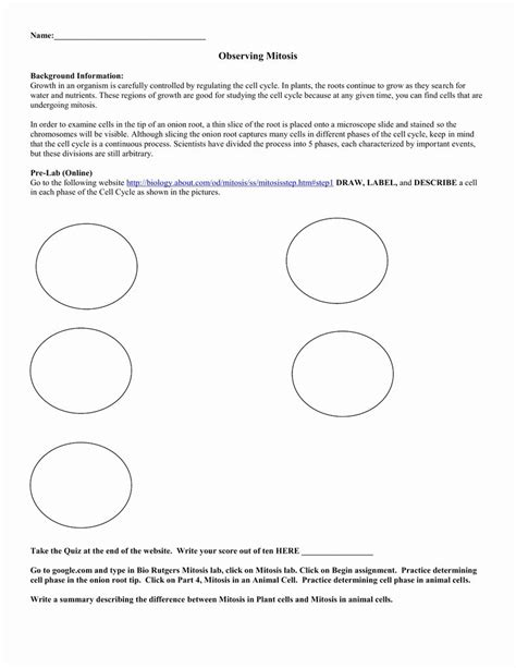 Cellsalive Worksheet Answers