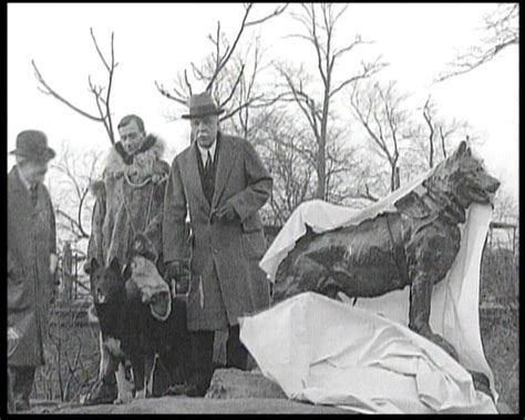 the new york ripper the true story of serial killer richard cottingham books a heroic and tugging statue in central park