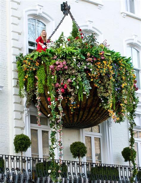 hanging window garden world s largest hanging flower basket urban gardens