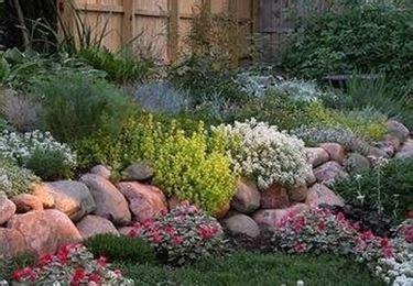 giardino roccioso fai da te creare giardino roccioso giardino fai da te