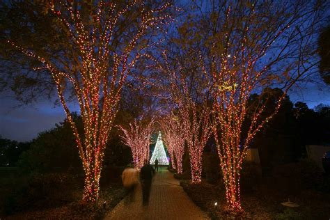 Atlanta Botanical Gardens Coupons Atlanta Botanical Gardens Lights Promo Code 2017 Garden Ftempo
