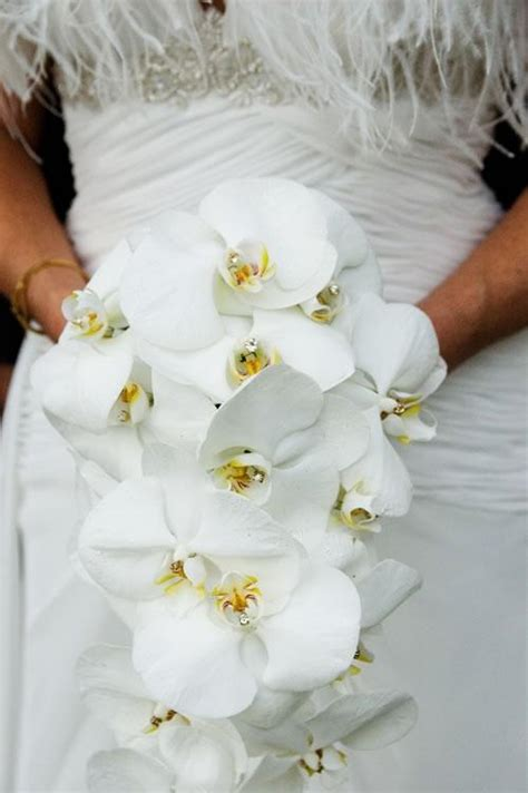 types of white flowers for wedding wedding bouquets the wedding specialiststhe