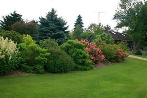 Landscape Shrubs Pictures Shrub Border Landscape