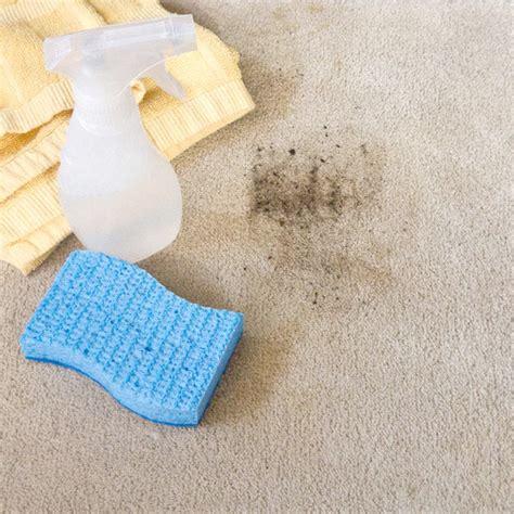 diy rug cleaning carpet cleaner popsugar smart living