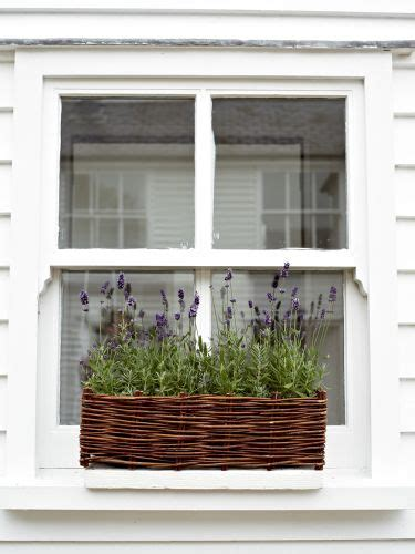 wicker window boxes 1000 images about made of wicker on white