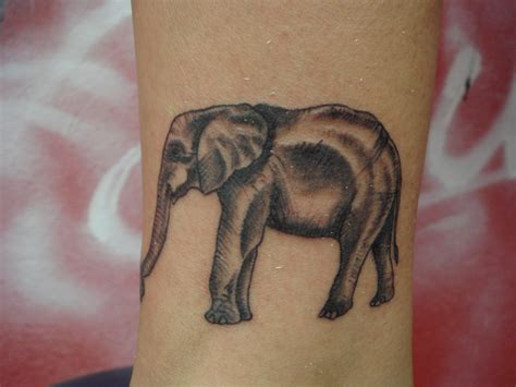 small elephant tattoo ideas small elephant designs collection