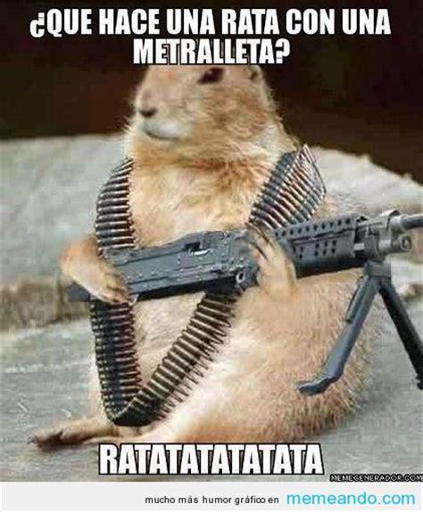 imagenes de memes animales los 10 memes de animales m 225 s tiernos y graciosos de la red
