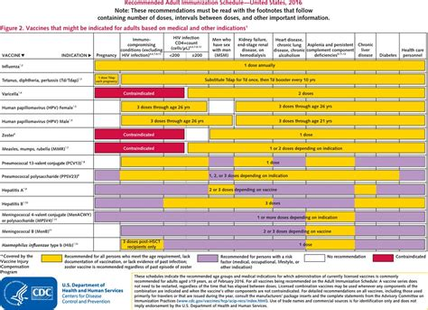 vaccination schedule image gallery 2016 vaccine schedule