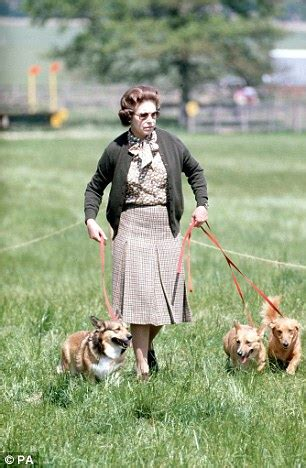 queen elizabeth s corgis queen against new dogs in buckingham palace in case she