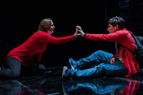 curious incident of the in the nighttime boston the curious incident of the in the time theatermania