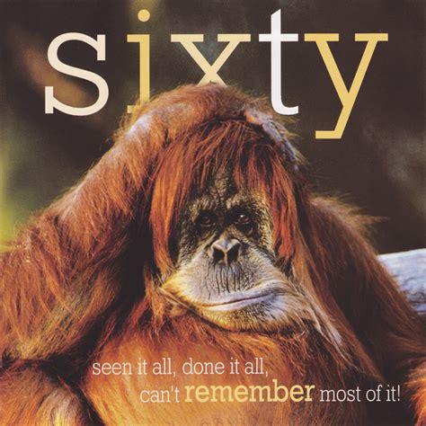 60th Birthday Meme - orangutan funny quotes quotesgram
