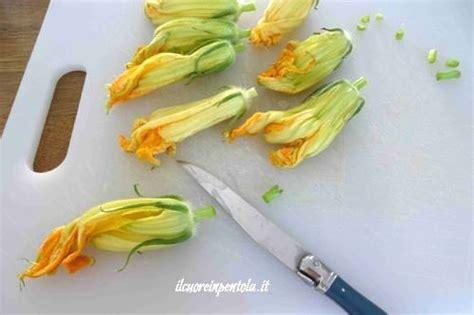 come conservare i fiori di zucca come pulire i fiori di zucca scuola di cucina
