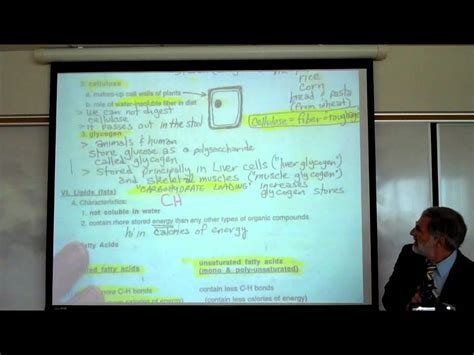 r carbohydrates for u carbohydrates fatty acids by professor fink