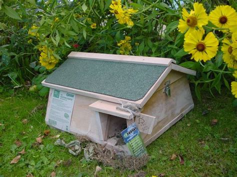 hedgehog houses to buy hedgehog mammal habitat with inspection roof and integral
