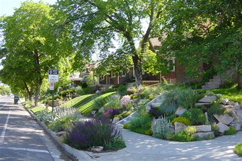 xeriscape design meaning blog archives word haiku