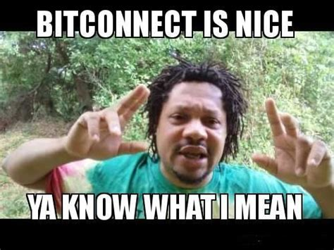 bitconnect exchange india what are you bitconnect doing here steemit