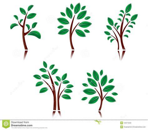 symbolism of trees tree symbols stock photos image 12377043