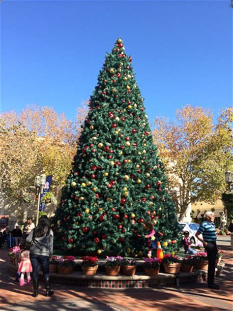 broadway plaza tree lighting on dec 5th beyond the creek