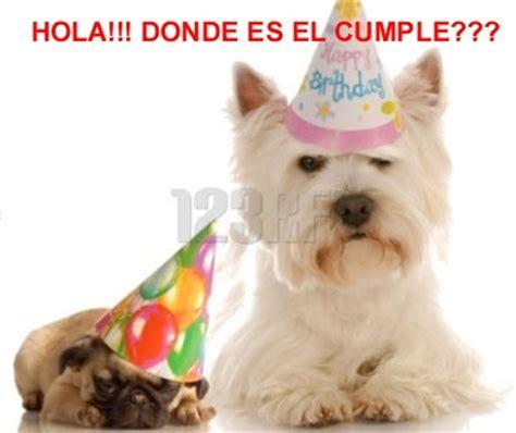 imagenes graciosas de cumpleaños con animales im 225 genes y tarjetas de cumplea 241 os chistosas ツ tarjetas