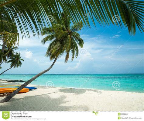 tropical island paradise tropical island paradise stock image image 33298941