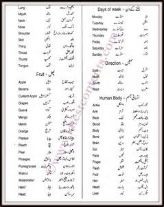 vocabulary of daily use in urdu