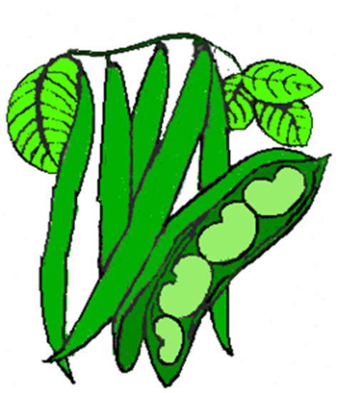 String Bean Clip - string bean clip clipart best