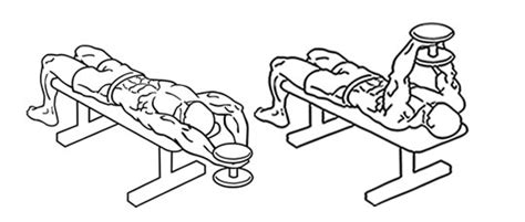 Weight Bench Cage The Best Chest Dumbbell Workouts Build Pecs With These