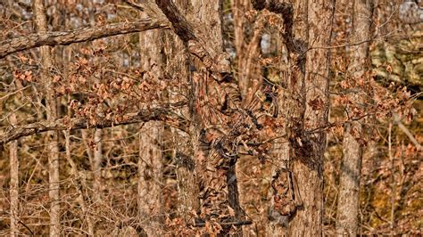 realtree backgrounds realtree camo wallpaper hd